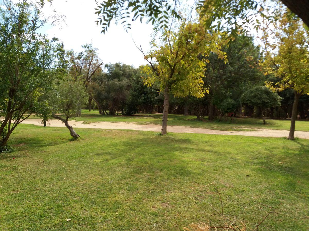 park akademia platona